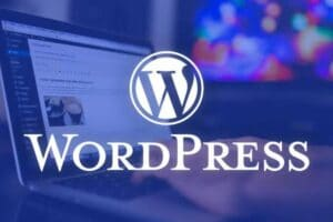 Wordpress 5.5, wordpress 5.5 güncellemesi, kadence teması, kadence