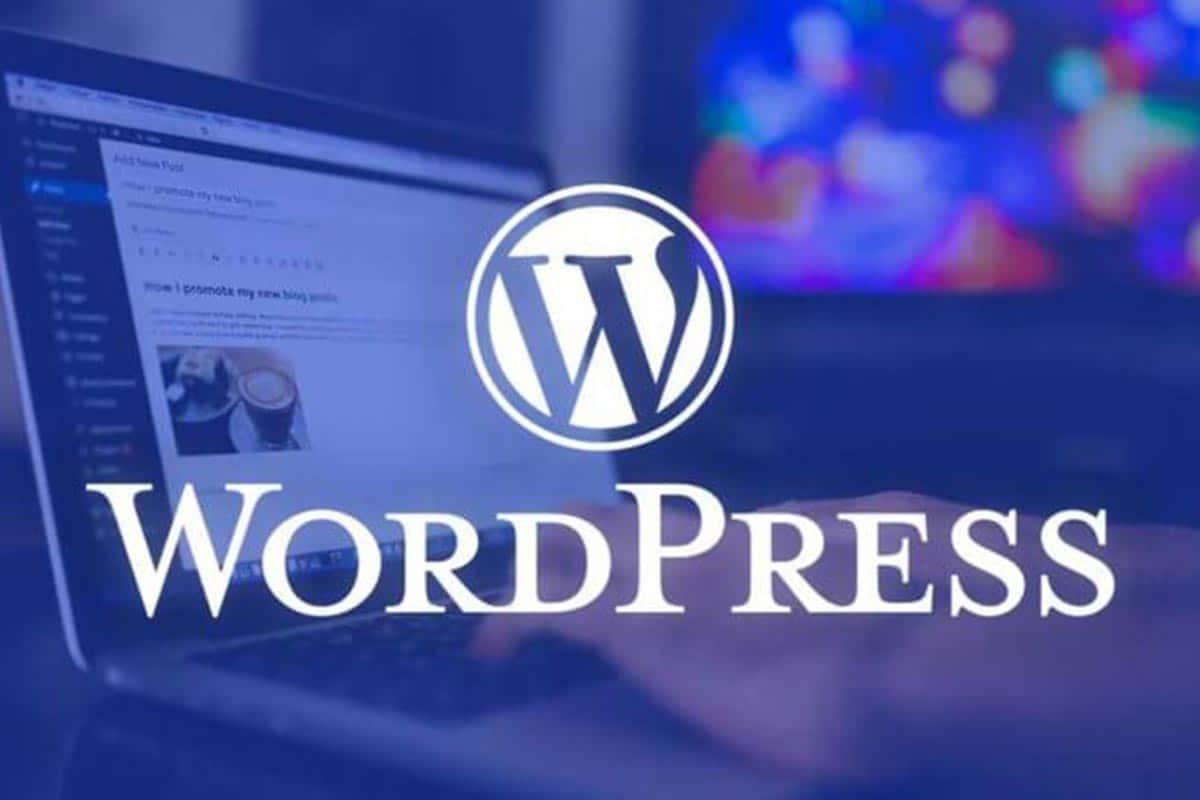 Wordpress 5.5, wordpress 5.5 güncellemesi, kadence teması, kadence